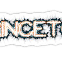 Princeton Sticker