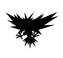 Zapdos Silhouette Photographic Print