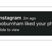 Bo Burnham LIKED IT Sticker
