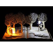 The Lion, The Witch and the Wardrobe Narnia book sculpture Photographic Print