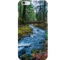 Bridge to trail 400 in color iPhone Case/Skin
