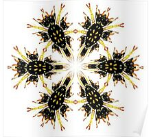 Geometric Wasp Part....? Poster