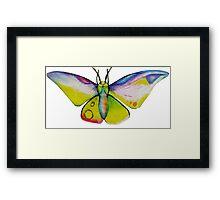 Myth Moth Framed Print