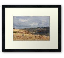 Upper Bidwell trail - Chico, CA Framed Print