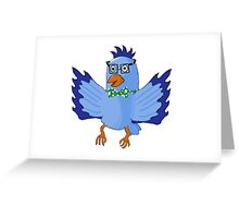 Fancy Feathers Greeting Card