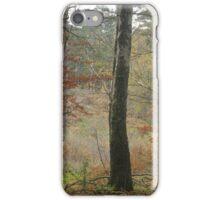 Autumn colour iPhone Case/Skin