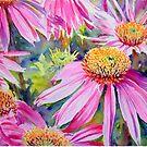 Purple Cone Flowers by Ruth S Harris
