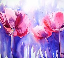 Pink Poppy Explosion by Ruth S Harris