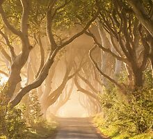Magic on the Kingsroad by Kristin Repsher