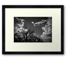I Will Call Out Your Name Framed Print
