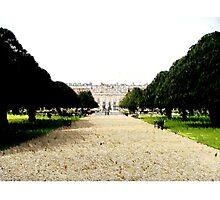 The Gardens at Hampton Court Photographic Print