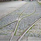 Abandoned Trolley Tracks, Cobblestone Street, Hoboken, New Jersey  by lenspiro