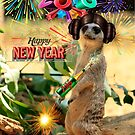 2016 Meerkat New Year by Larry3