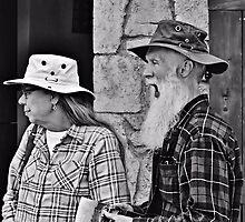 The Tourists by Scott Mitchell