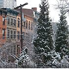 Snow View, Van Vorst Park, Jersey City, New Jersey by lenspiro