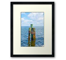 Three Friends in the Sea Framed Print