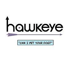 hawkdog Photographic Print
