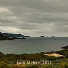 Cape Bruny by Kate Hibbert