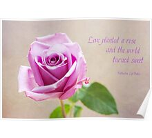 Love Planted a Rose Poster