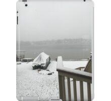 Snowy Pleasant Lake iPad Case/Skin