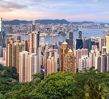 Skyline of Hong Kong from Victoria Peak at sunset by Aurádius Photography