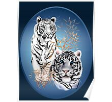 Two White Tigers Oval  Poster