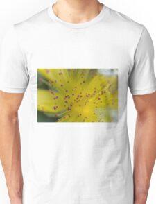 buttercup in the garden Unisex T-Shirt