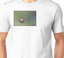 Spiny Orb Weaver - Gasteracantha Cancriformis Unisex T-Shirt