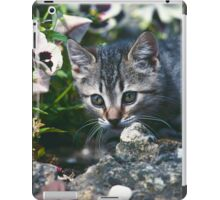 "Chat - Cat  "" Zazou "" 8 (c)(t) ) by Olao-Olavia / Okaio Créations 300mm  f.2.8 canon eos 5  1989 iPad Case/Skin"