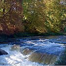 The River Ure by John (Mike)  Dobson