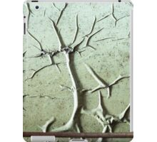 Abstract Peeling Paint iPad Case/Skin