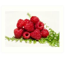 Berry Fresh Art Print