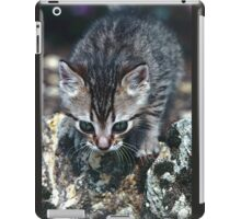"Chat - Cat  "" Zazou "" 9 (c)(t) ) by Olao-Olavia / Okaio Créations 300mm  f.2.8 canon eos 5  1989 iPad Case/Skin"