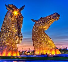 """THE KELPIES"" by Peter Sutton"