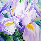 Shades of Blue and Purple by Ruth S Harris