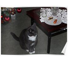 Smokey waiting for Santa Poster
