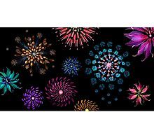 Floral Fireworks Photographic Print