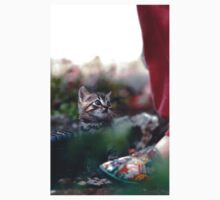 "Chat - Cat  "" Zazou ""  11 (c)(h) ) by Olao-Olavia / Okaio Créations 300mm  f.2.8 canon eos 5  1989 One Piece - Short Sleeve"