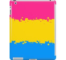 Pansexual Pride Flag iPad Case/Skin
