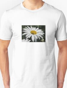 Close Up Common Daisy with Winged Insects Unisex T-Shirt