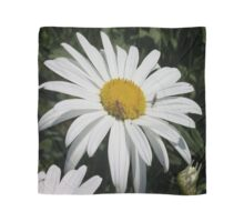 Close Up Common Daisy with Winged Insects Scarf