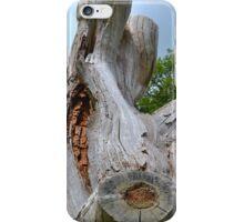 Long lasting Tree  iPhone Case/Skin