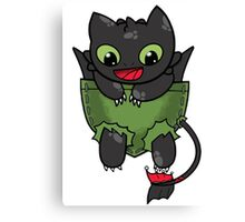 Hiccup Toothless pocket Canvas Print