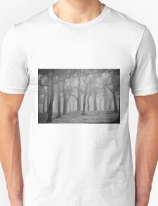 Misty Trees on the Antonine Wall Unisex T-Shirt