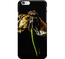 Decayed Flower iPhone Case/Skin