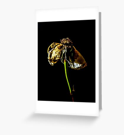 Decayed Flower Greeting Card