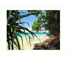 Tropical Ocean View : Blue & Green at First Point Noosa Art Print