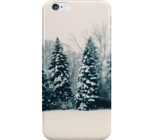 Winter and Woods iPhone Case/Skin