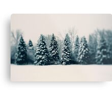 Winter and Woods Metal Print