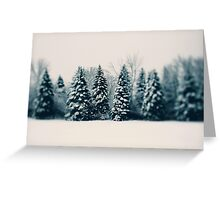 Winter and Woods Greeting Card